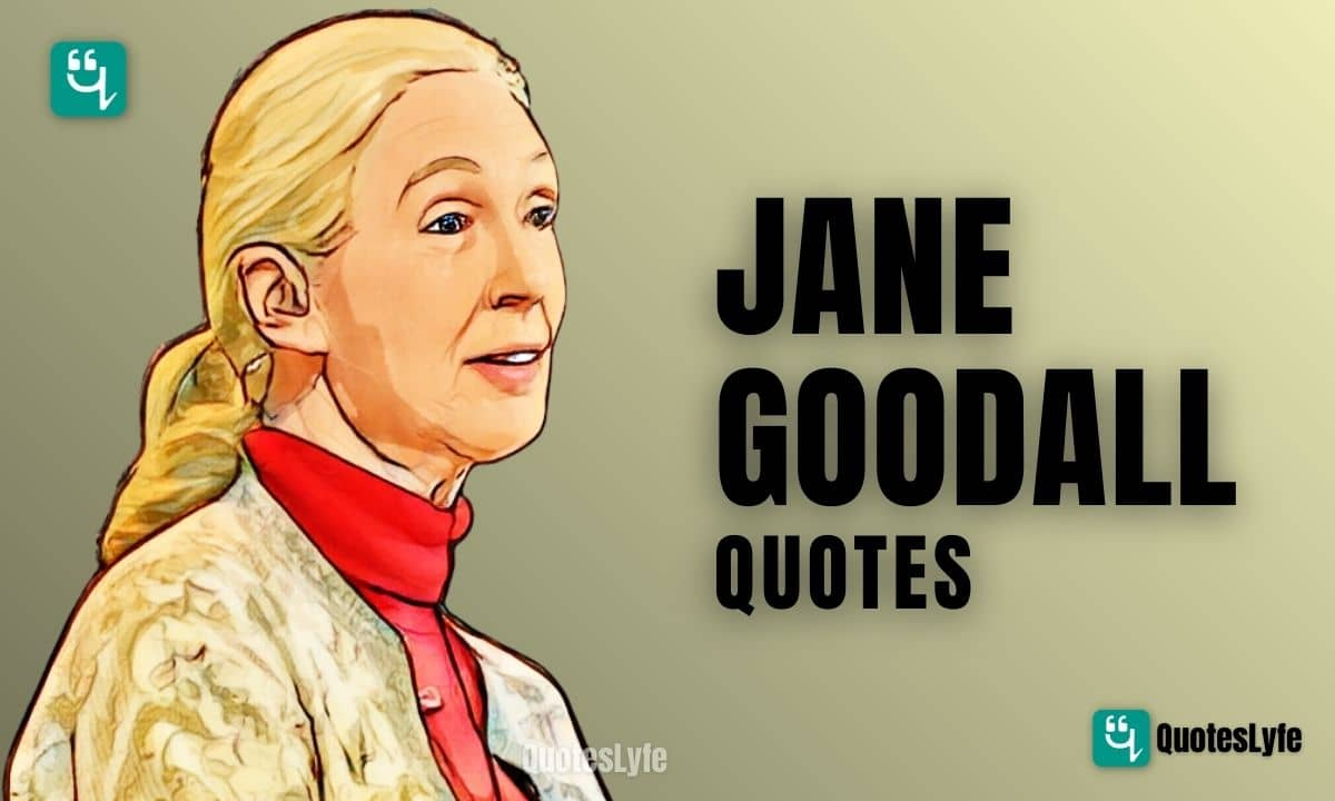 Famous Jane Goodall Quotes and Sayings