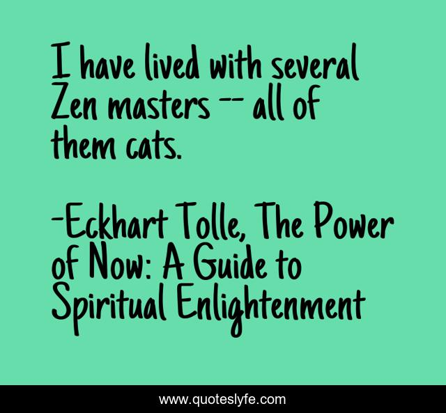 I have lived with several Zen masters -- all of them cats.