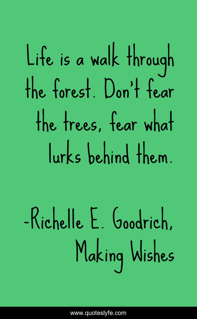 Life is a walk through the forest. Don't fear the trees, fear what lurks behind them.