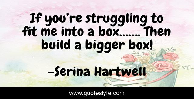 If you're struggling to fit me into a box……. Then build a bigger box!