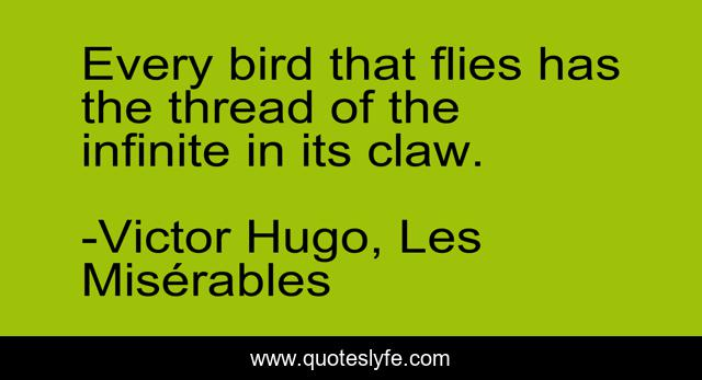 Every bird that flies has the thread of the infinite in its claw.