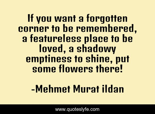 If you want a forgotten corner to be remembered, a featureless place to be loved, a shadowy emptiness to shine, put some flowers there!