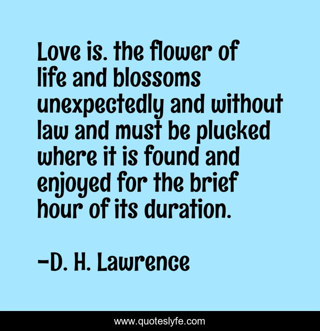 Love is. the flower of life and blossoms unexpectedly and without law and must be plucked where it is found and enjoyed for the brief hour of its duration.
