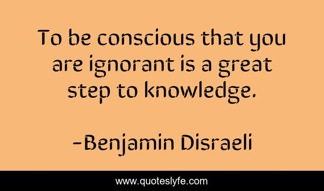 To be conscious that you are ignorant is a great step to knowledge.