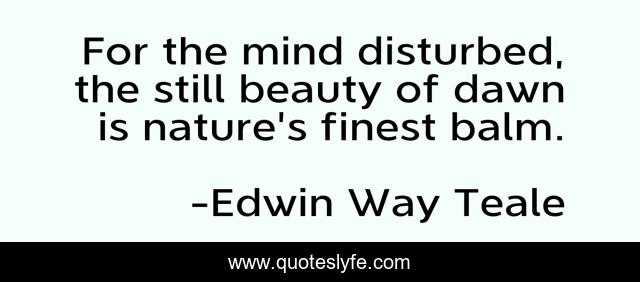For the mind disturbed, the still beauty of dawn is nature's finest balm.