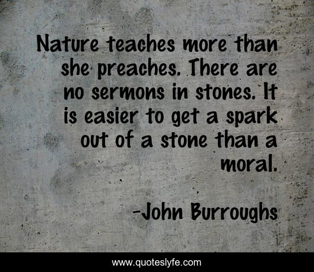Nature teaches more than she preaches. There are no sermons in stones. It is easier to get a spark out of a stone than a moral.