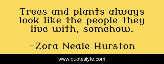 Trees and plants always look like the people they live with, somehow.