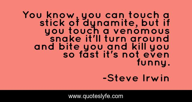 Best Steve Irwin Quotes With Images To Share And Download For Free At Quoteslyfe