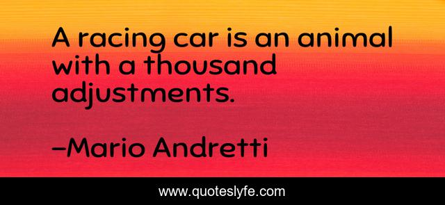 A racing car is an animal with a thousand adjustments.