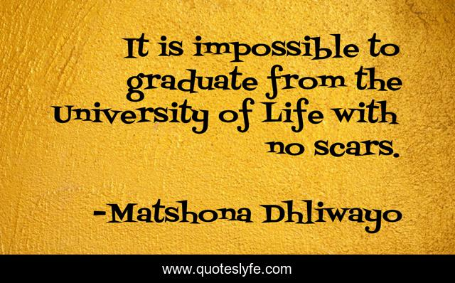 It is impossible to graduate from the University of Life with no scars.