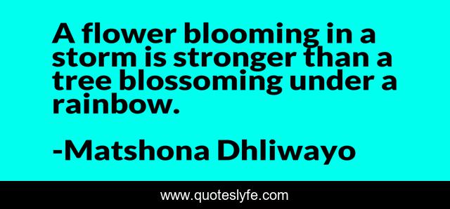 A flower blooming in a storm is stronger than a tree blossoming under a rainbow.