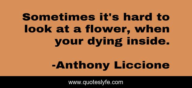 Sometimes it's hard to look at a flower, when your dying inside.
