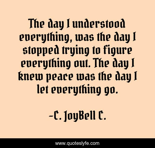 The day I understood everything, was the day I stopped trying to figure everything out. The day I knew peace was the day I let everything go.