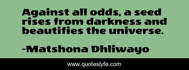Against all odds, a seed rises from darkness and beautifies the universe.