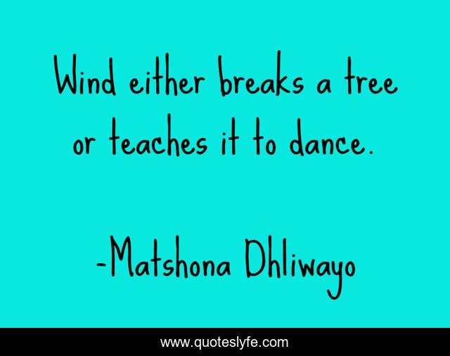 Wind either breaks a tree or teaches it to dance.