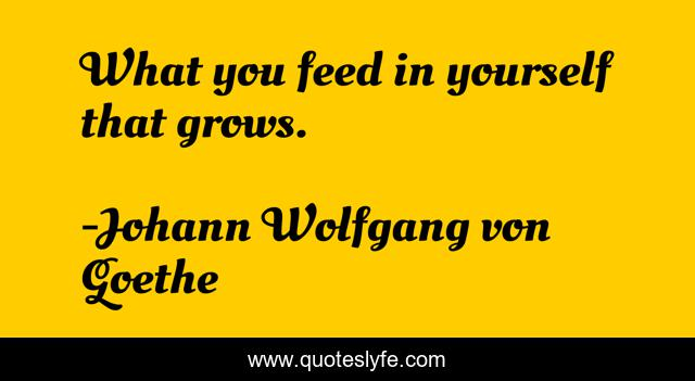 What you feed in yourself that grows.