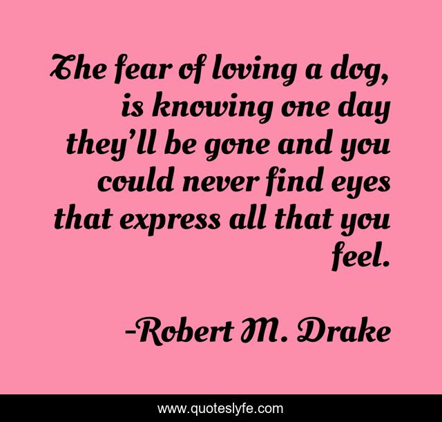 The fear of loving a dog, is knowing one day they'll be gone and you could never find eyes that express all that you feel.