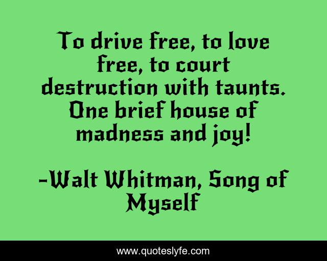 To drive free, to love free, to court destruction with taunts. One brief house of madness and joy!
