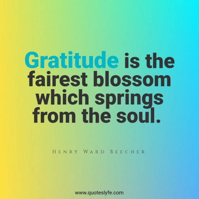 """Gratitude Quotes: """"Gratitude is the fairest blossom which springs from the soul."""""""