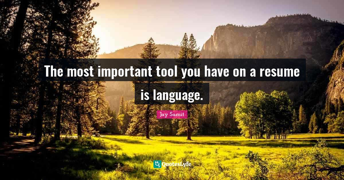Jay Samit Quotes: The most important tool you have on a resume is language.