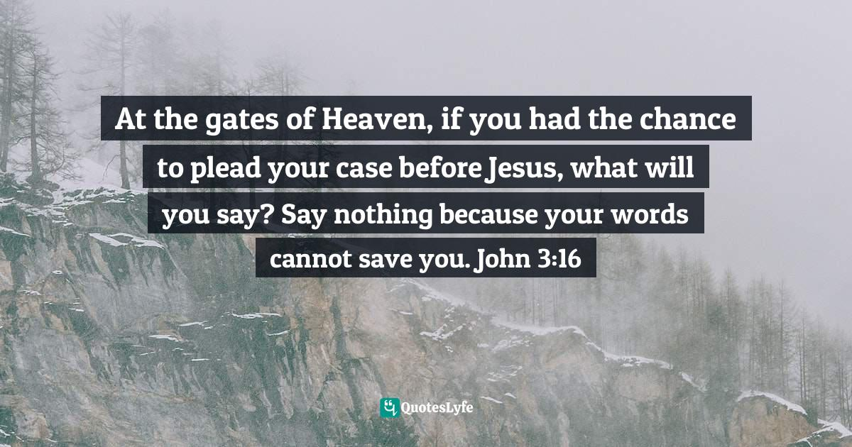 Felix Wantang, Face to Face Meetings with Jesus Christ 3: Revealing the End of the Age Quotes: At the gates of Heaven, if you had the chance to plead your case before Jesus, what will you say? Say nothing because your words cannot save you. John 3:16