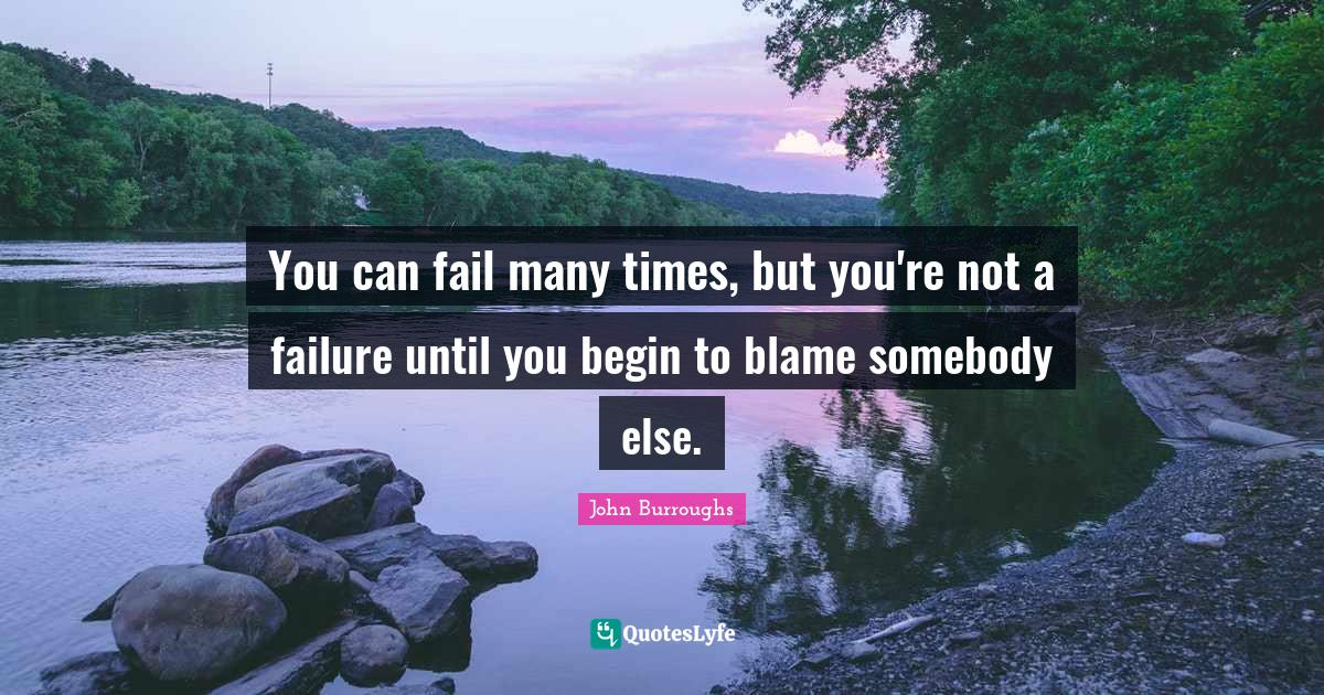 John Burroughs Quotes: You can fail many times, but you're not a failure until you begin to blame somebody else.