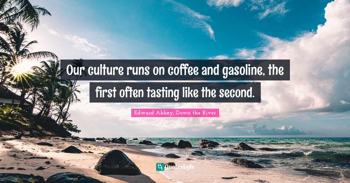 Edward Abbey, Down the River Quotes: Our culture runs on coffee and gasoline, the first often tasting like the second.