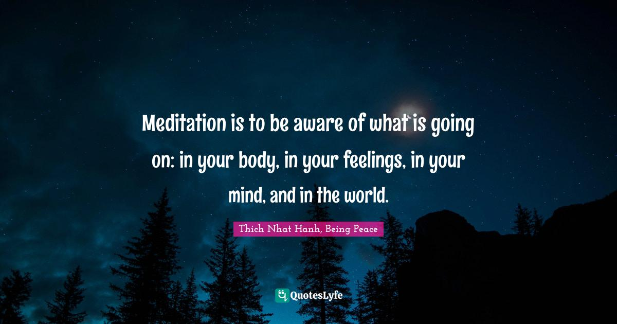 Thich Nhat Hanh, Being Peace Quotes: Meditation is to be aware of what is going on: in your body, in your feelings, in your mind, and in the world.