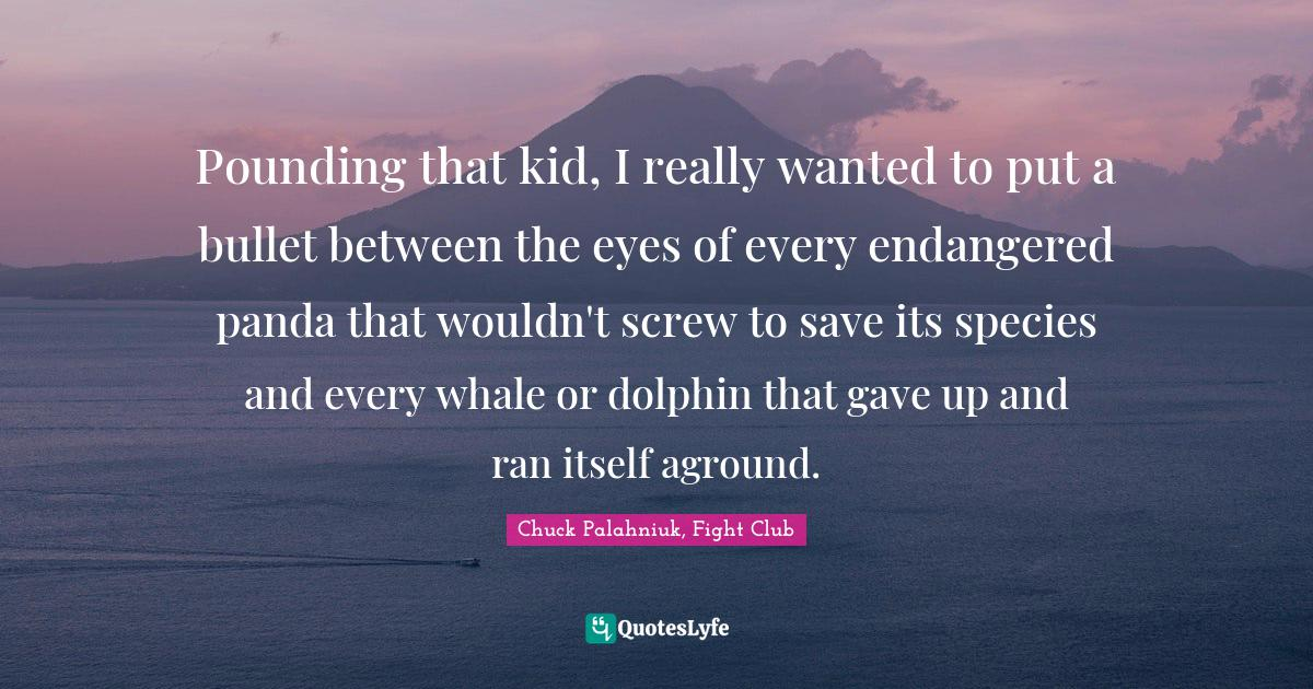 Chuck Palahniuk, Fight Club Quotes: Pounding that kid, I really wanted to put a bullet between the eyes of every endangered panda that wouldn't screw to save its species and every whale or dolphin that gave up and ran itself aground.