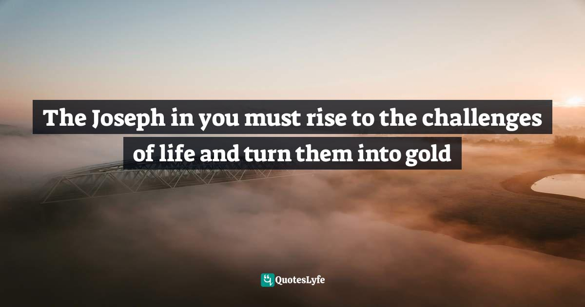 Ikechukwu Joseph, The Complete Leader: Jesus Christ the Accomplished Perfect Total Leader Quotes: The Joseph in you must rise to the challenges of life and turn them into gold