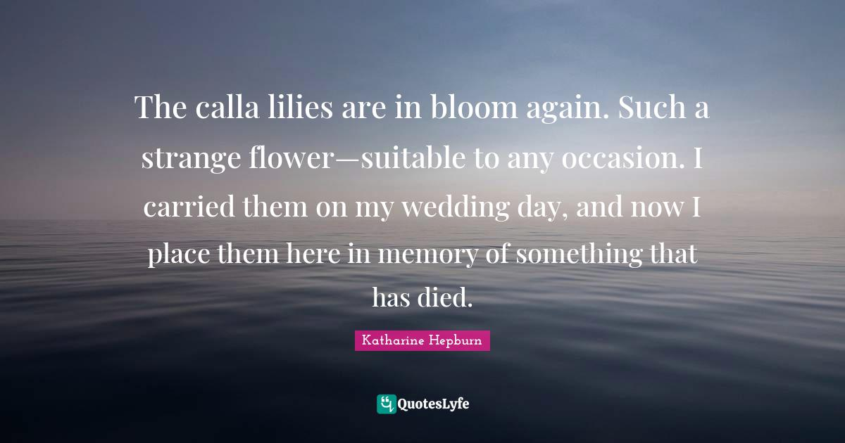 Katharine Hepburn Quotes: The calla lilies are in bloom again. Such a strange flower—suitable to any occasion. I carried them on my wedding day, and now I place them here in memory of something that has died.