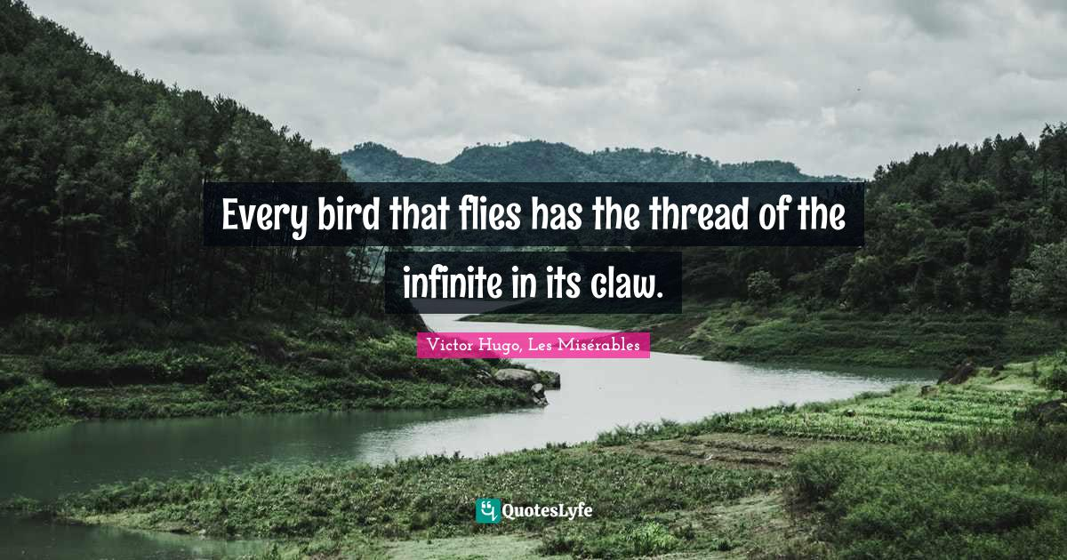Victor Hugo, Les Misérables Quotes: Every bird that flies has the thread of the infinite in its claw.