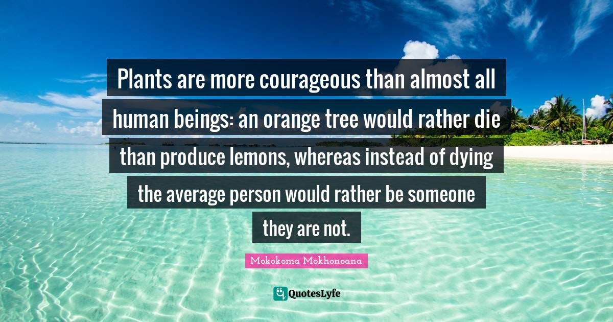 Mokokoma Mokhonoana Quotes: Plants are more courageous than almost all human beings: an orange tree would rather die than produce lemons, whereas instead of dying the average person would rather be someone they are not.