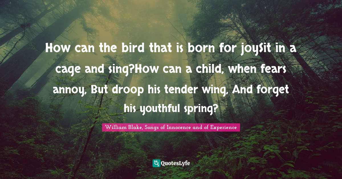 William Blake, Songs of Innocence and of Experience Quotes: How can the bird that is born for joySit in a cage and sing?How can a child, when fears annoy, But droop his tender wing, And forget his youthful spring?