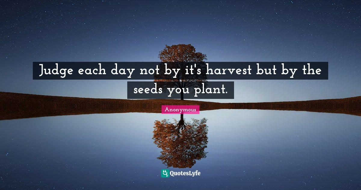 Anonymous Quotes: Judge each day not by it's harvest but by the seeds you plant.