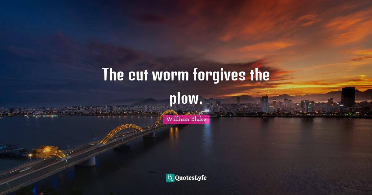 William Blake Quotes: The cut worm forgives the plow.