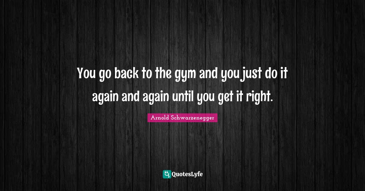 Arnold Schwarzenegger Quotes: You go back to the gym and you just do it again and again until you get it right.