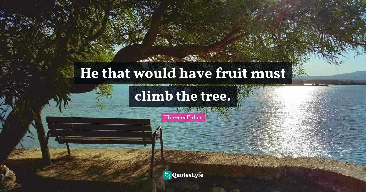 Thomas Fuller Quotes: He that would have fruit must climb the tree.