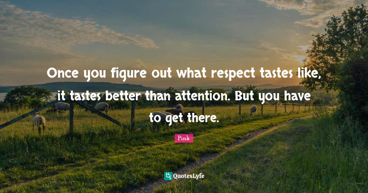 Pink Quotes: Once you figure out what respect tastes like, it tastes better than attention. But you have to get there.