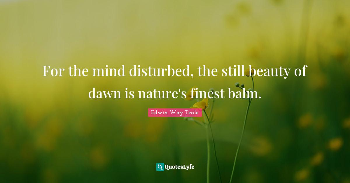 Edwin Way Teale Quotes: For the mind disturbed, the still beauty of dawn is nature's finest balm.