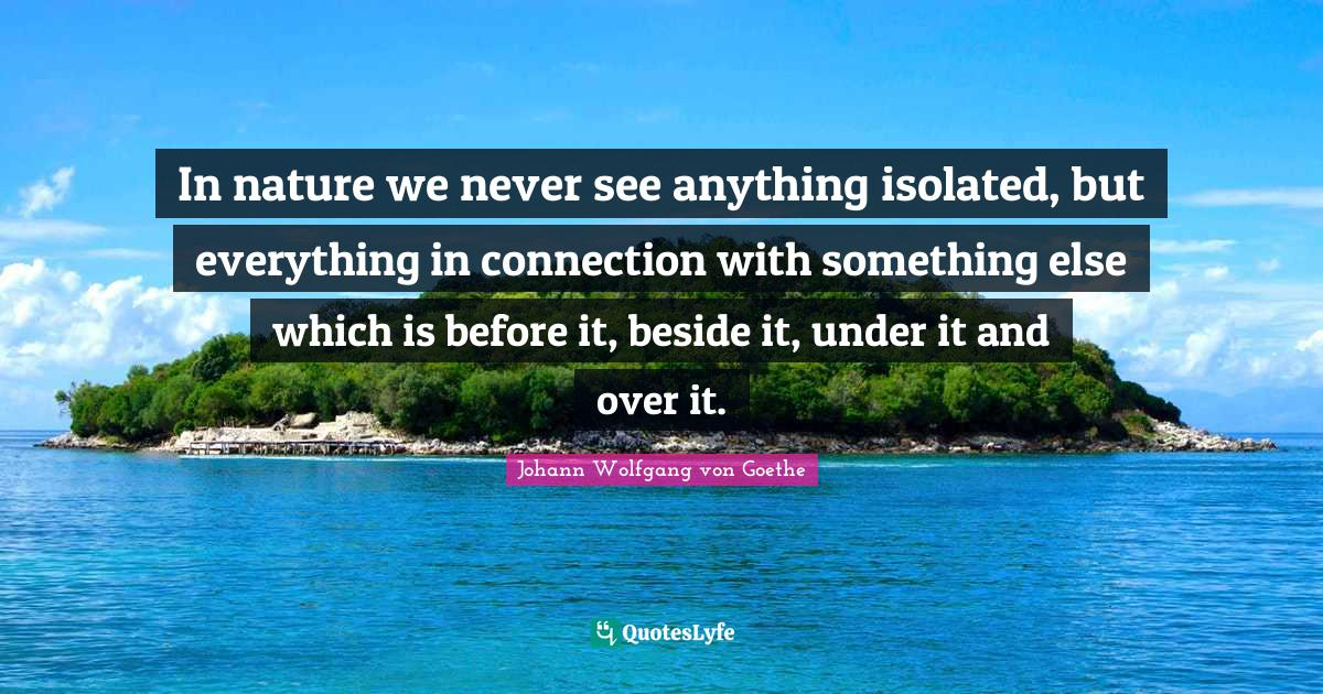 Johann Wolfgang von Goethe Quotes: In nature we never see anything isolated, but everything in connection with something else which is before it, beside it, under it and over it.