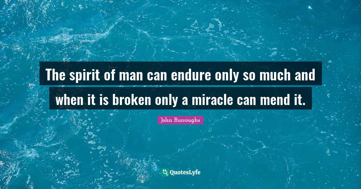 John Burroughs Quotes: The spirit of man can endure only so much and when it is broken only a miracle can mend it.