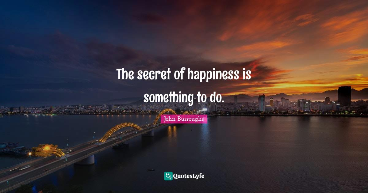 John Burroughs Quotes: The secret of happiness is something to do.