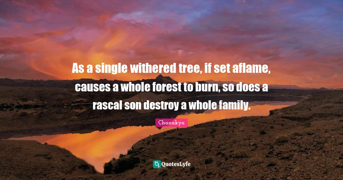 Chanakya Quotes: As a single withered tree, if set aflame, causes a whole forest to burn, so does a rascal son destroy a whole family.