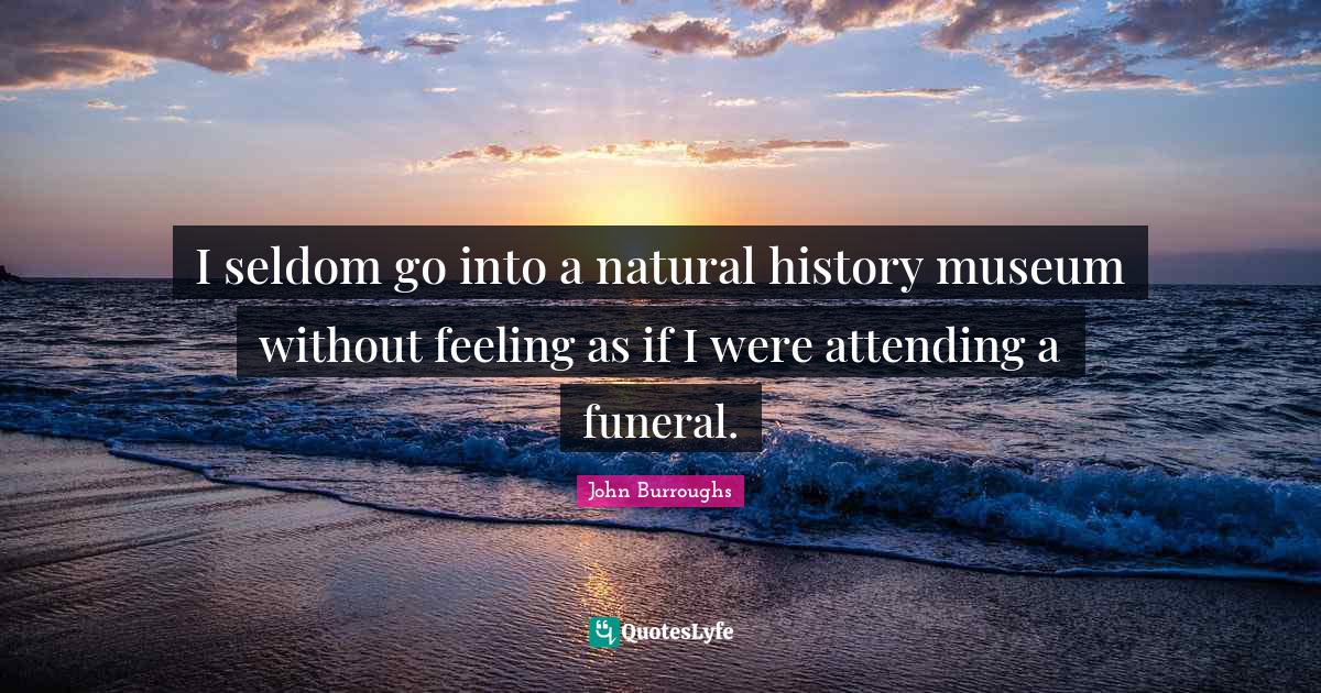 John Burroughs Quotes: I seldom go into a natural history museum without feeling as if I were attending a funeral.