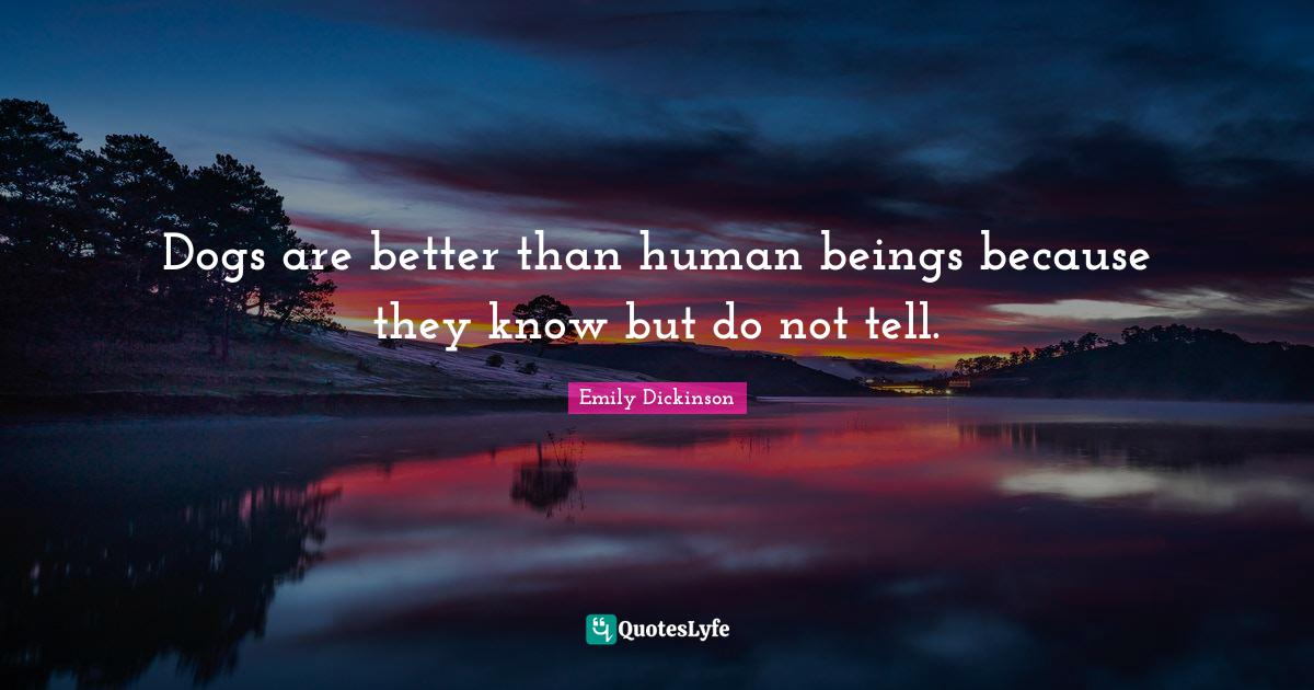 Emily Dickinson Quotes: Dogs are better than human beings because they know but do not tell.