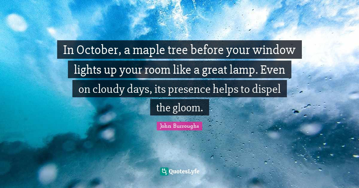 John Burroughs Quotes: In October, a maple tree before your window lights up your room like a great lamp. Even on cloudy days, its presence helps to dispel the gloom.