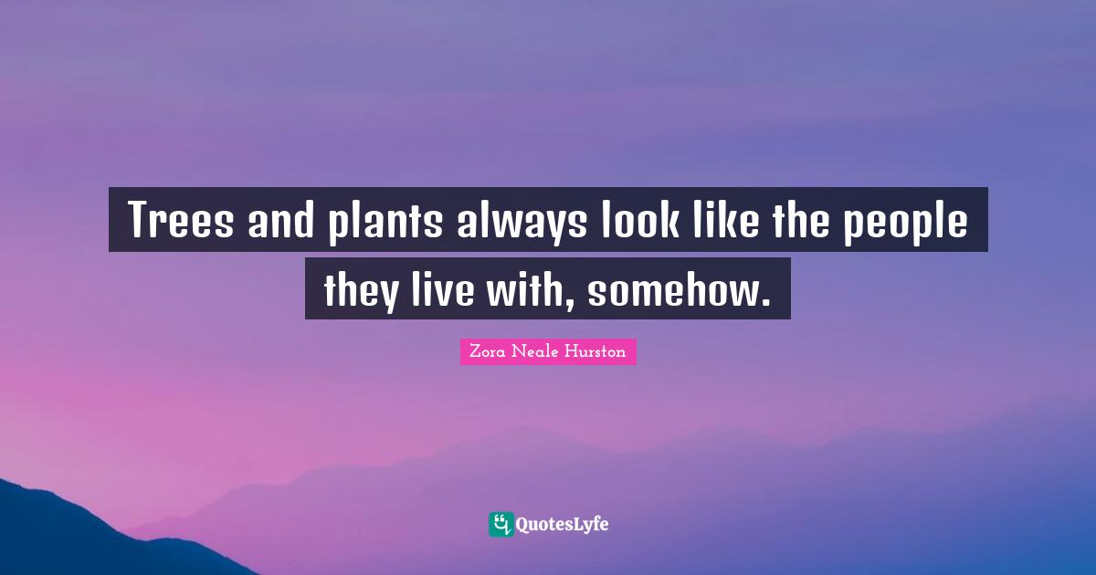 Zora Neale Hurston Quotes: Trees and plants always look like the people they live with, somehow.