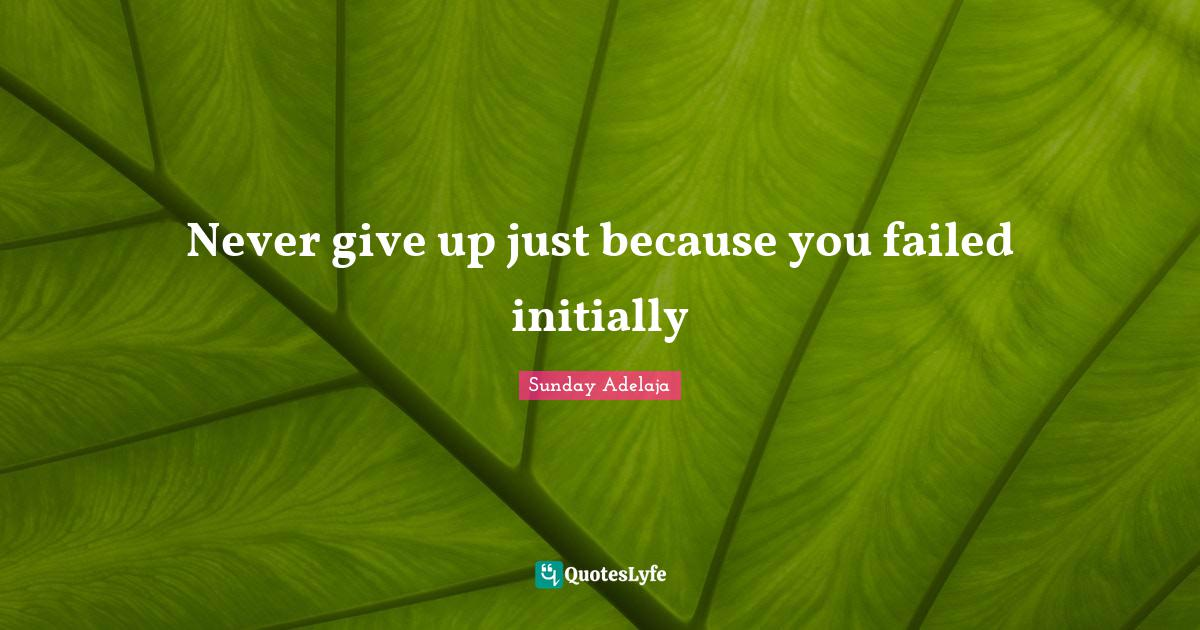 Sunday Adelaja Quotes: Never give up just because you failed initially