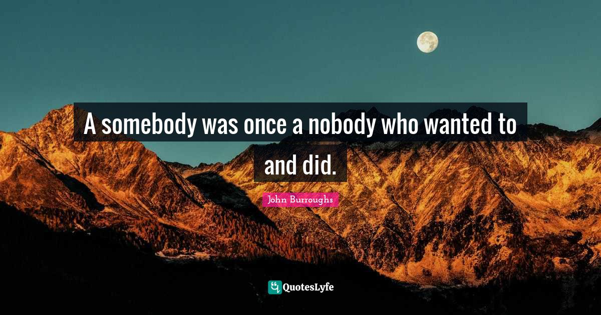 John Burroughs Quotes: A somebody was once a nobody who wanted to and did.